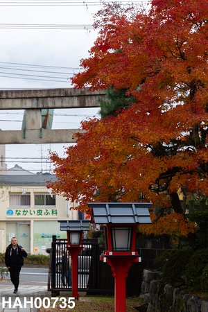 Wara Tenjingu Shrine: 入り口近く