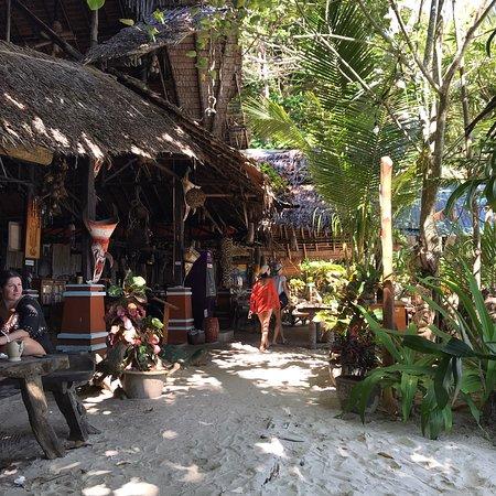 Bellissimo Resort immerso interamente nella natura, scimmie, gechi, pesci e una tranquillità infinita