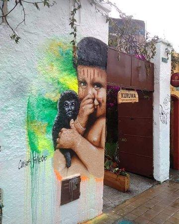 carlos trilleras graffiti, graffiti tour bogota