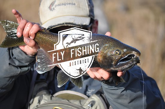 Fly Fishing District