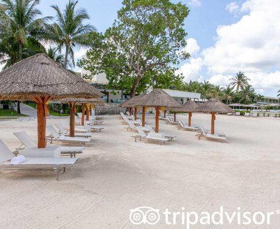 Beach at the Presidente Inter-Continental Cozumel Resort & Spa