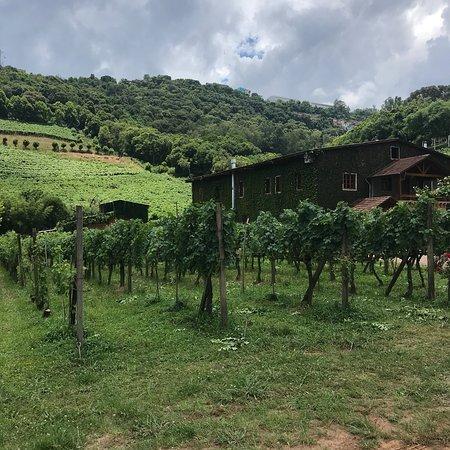 Osteria Del Valle Foto