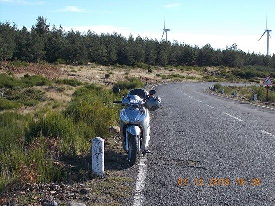 4&2 Wheels Rent: FOTO POSTADA POR UM CLIENTE,SUBIDA AO PAUL DA SERRA.A NATUREZA DA MADEIRA NO SEU ESPLENDOR.