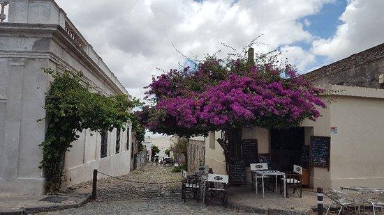 Barrio Historico – fénykép