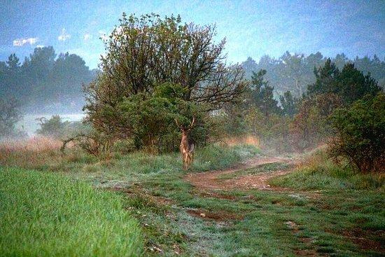 Sassoferrato, Italia: Doglio bike Park