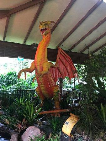 Dragon photo op