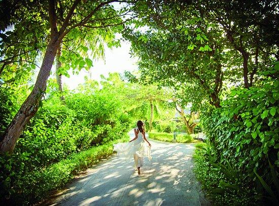 Dhidhoofinolhu Island: Other