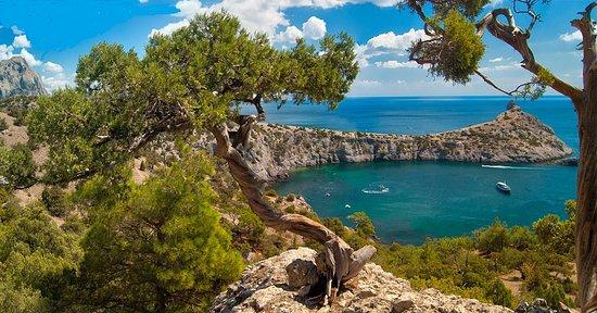 Novyi Svit: Райское место для отдыха, чистое море и везде запах можжевельника, вокруг заповедник, проживание подробнее : http://отдых-в-крыму.su/novyj-svet-krym-otdyh-2019-zhilyo-ceny/