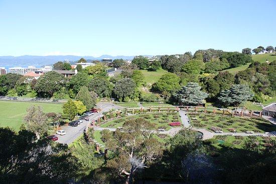 Greater Wellington Foto
