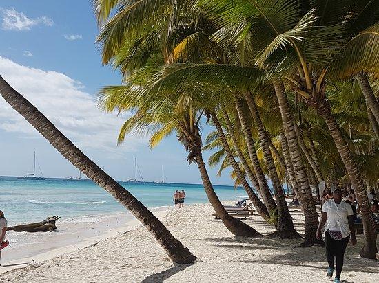 Isla Saona, Доминикана: Paradise