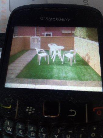 Jardín de mi propiedad.
