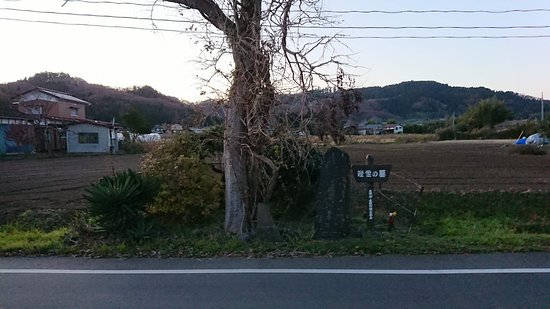 Tombstone of Ikuyo Princess and Kosaji