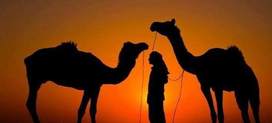 Adventure of thar Jaisalmer exclusive camping in Jaisalmer including the desert package all