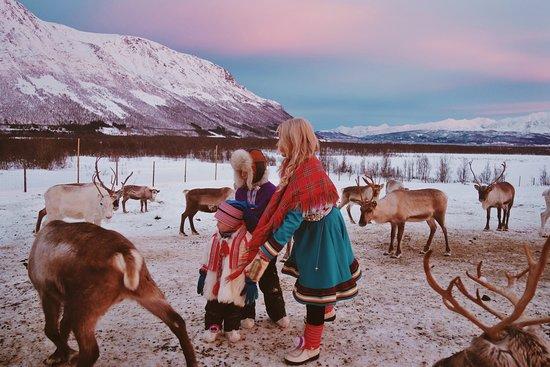 Tromso Lapland: Experience our unique Sami culture