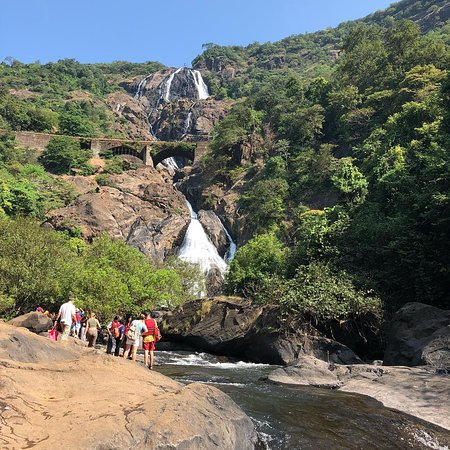 Dudhsagar falls is really a cool place to visit in Goa, whether you chose to go independently or on an organized trip. We were group of 25 people we choose to go on an organized trip as it was our first time in Goa. we stopped at a place for breakfast which was excellent ,we were greeted with lemon tea ,also there is elephants to see which you can ride on if you wish ,not for me.