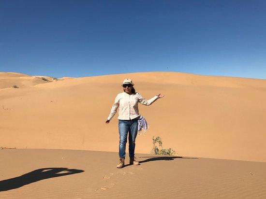 El Pinacate y Gran Desierto de Altar Biosphere Reserve: Llegue