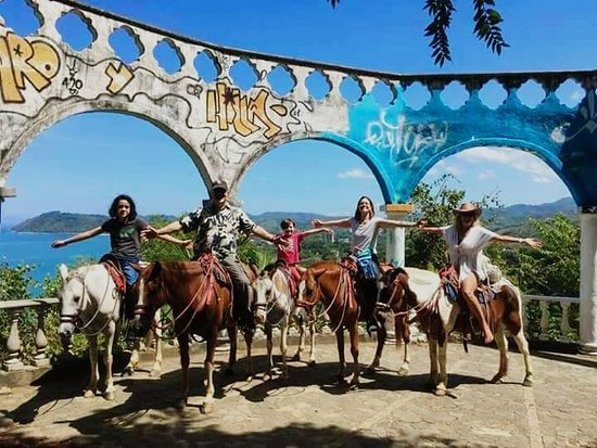 Horseback Riding  JACO DOWNTOWN In this horseback tour we take riders to the mountains behind Jaco riding across a tropical jungle with exuberant plants and wildlife.