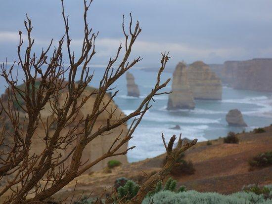 Twelve Apostles: in the mist