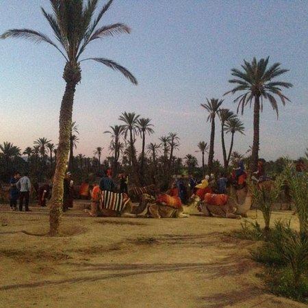 Μαρόκο δωρεάν ιστοσελίδες dating