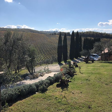 Wine tasting tours and sightseeing in Tuscany with a private sommelier and wine expert and history lover
