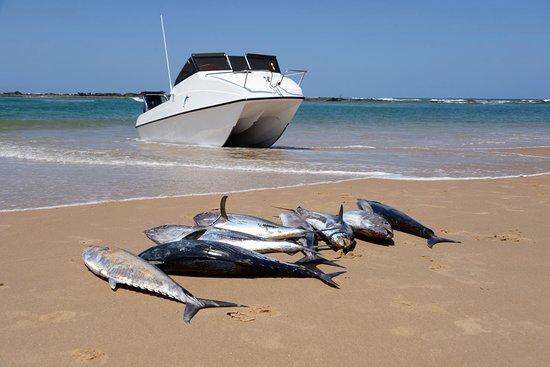 Zavora, Mozambique: getlstd_property_photo