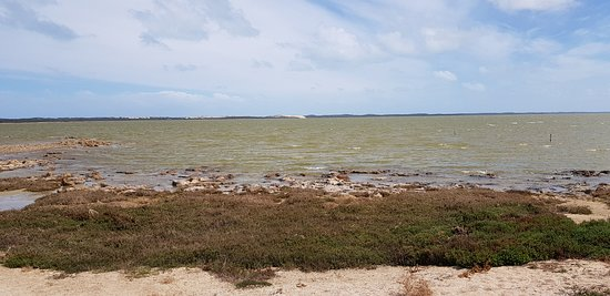 Coorong National Park: The park.