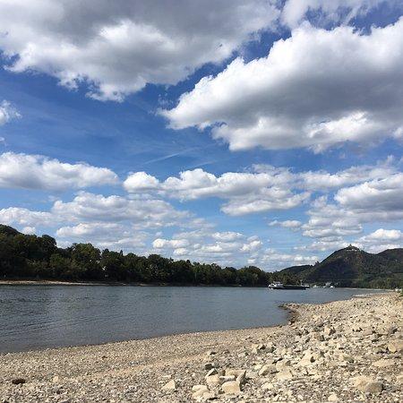 Wandern im Wochenende, Drachenfels, Weinberge, Rhein, Rheinaue, Insel Grafenwerth