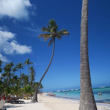 La spiaggia bianca ...con l'ottimo lavoro di chi la mantiene tale