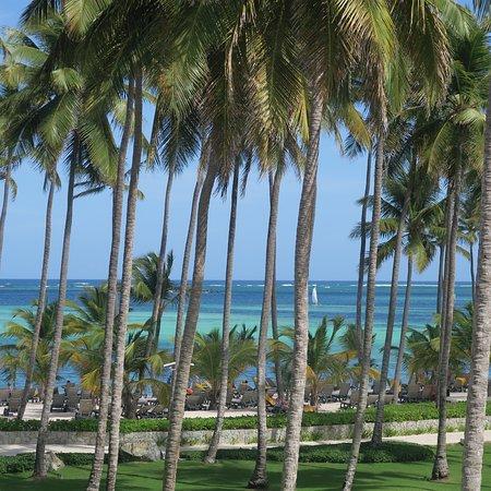 Barcelo Bavaro Palace: La spiaggia bianca ...con l'ottimo lavoro di chi la mantiene tale