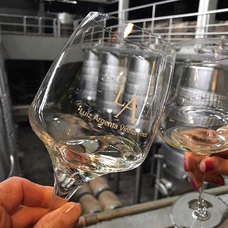 Tour de vinho