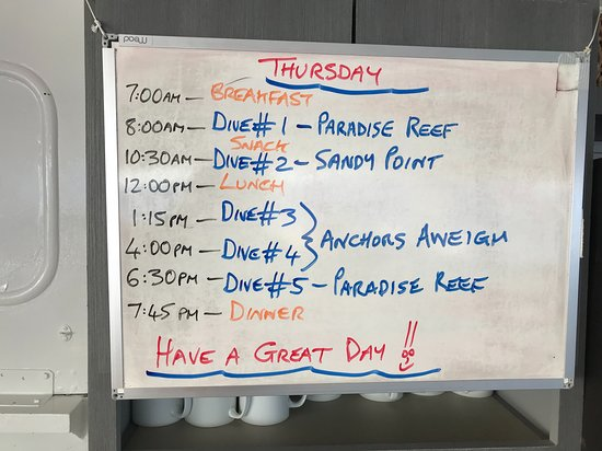Daily schedule.