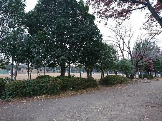 Katahira Park
