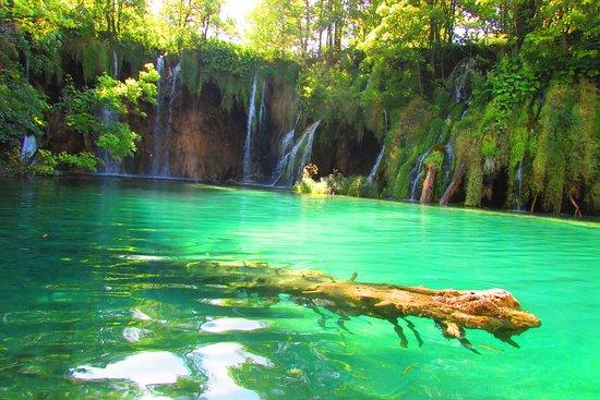 Plitvicei-tavak Nemzeti Park, Horvátország: Il piacere di osservare durato 7 Km a piedi