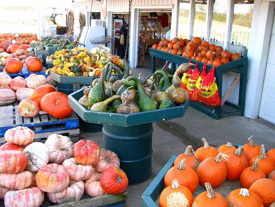 Peck's Farm Market