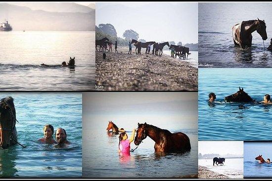 Nadar con un caballo en Kalamata