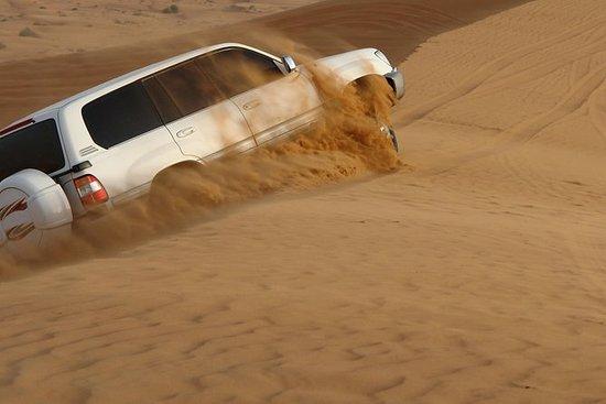 Deserto de Abu Dhabi Safari matinal...