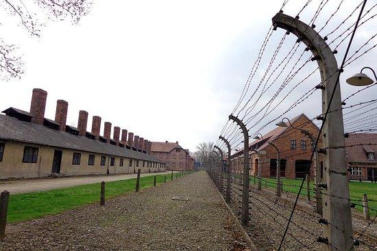 Tour di Auschwitz Birkenau da Cracovia
