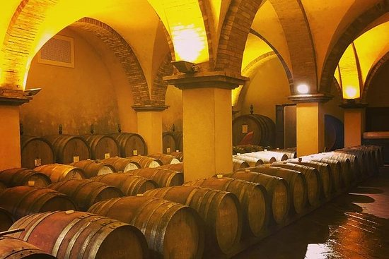 Private Tuscany Wine Tour Experience...