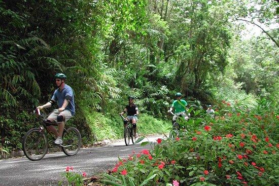 Tour de vélo Blue Mountain original...
