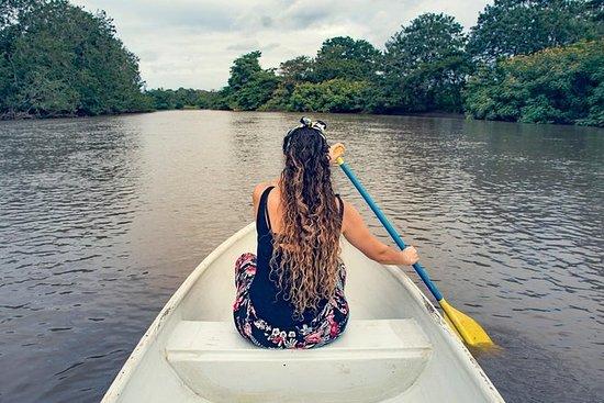 RíoFrio和CañoNegro的独木舟体验