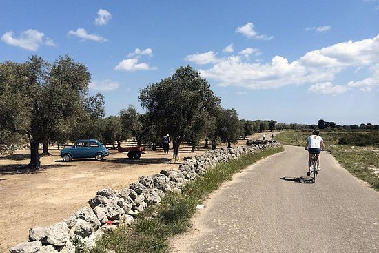 From Lecce to the Coast Full-day Bike...