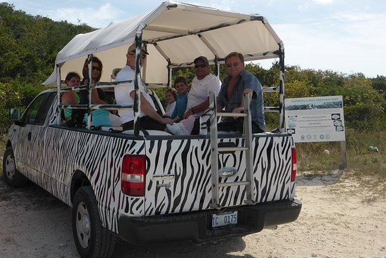 Providenciales Sunset Safari Tour