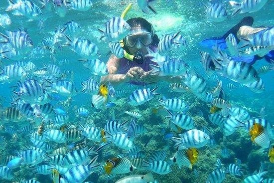Lagoa Azul Snorkeling East Bali