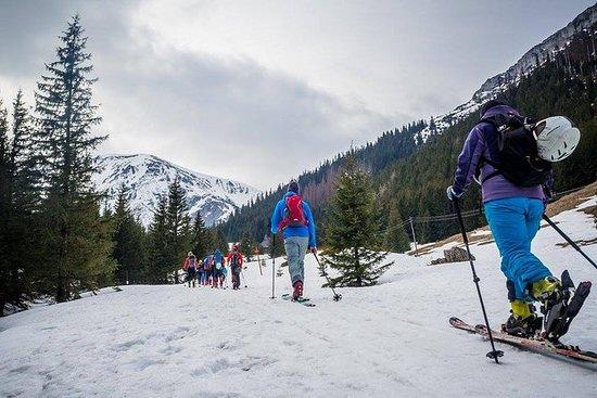 4 timers ski tur i Tatra-fjellene for...