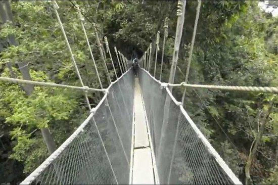 Tour delle terme di Kinabalu Park e