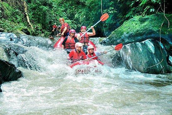 Rafting en el río Ayung y visita al...