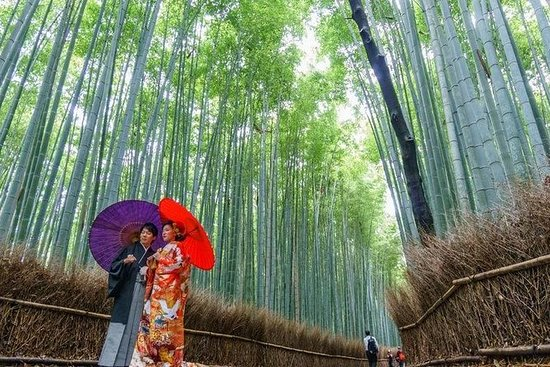 Magical Arashiyama Tour met Bamboo ...