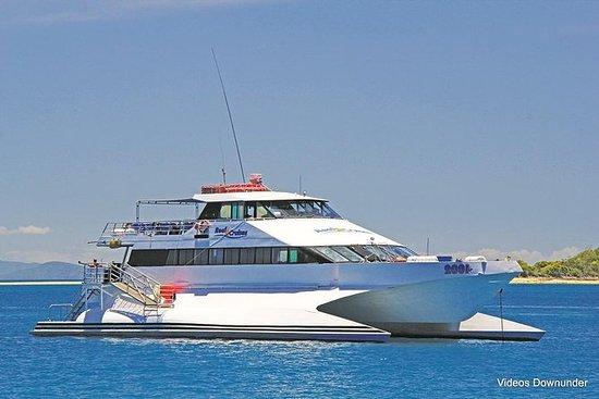 リーフスタークルーズはホワイトヘブンビーチを含むツアーをリラックスして探検し…