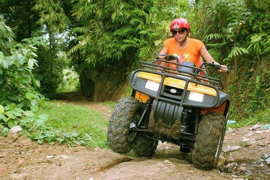 Ubud Sightseeing Quad Bike Adventure...