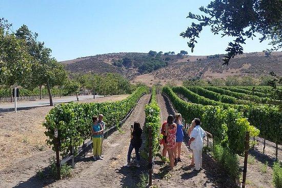 Tour privado de vino para 2 de...